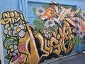 Mur29