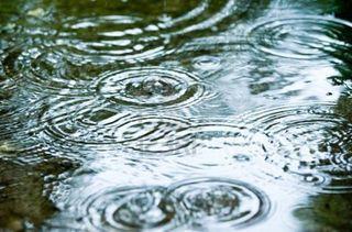 5126260-gouttes-de-pluie-d-39-ondulation-dans-une-flaque-d-39-eau