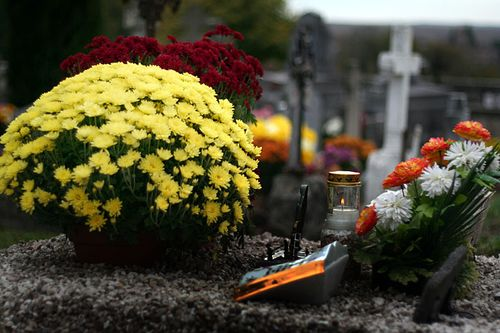 La-ville-met-des-navettes-électriques-à-disposition-pour-se-rendre-aux-cimetières